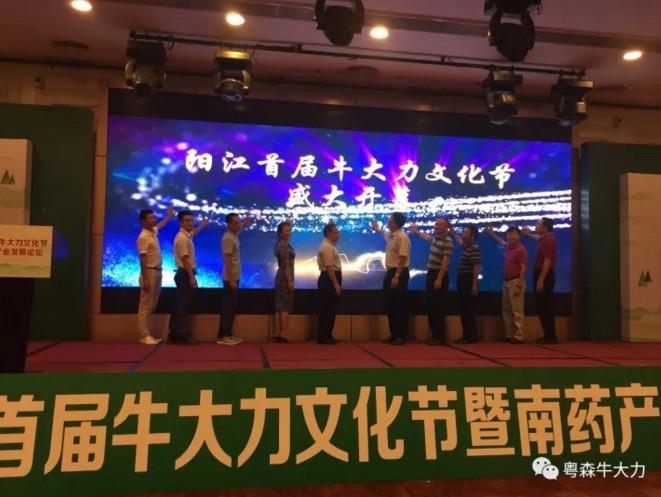 重磅!中国首届牛大力文化节隆重开幕