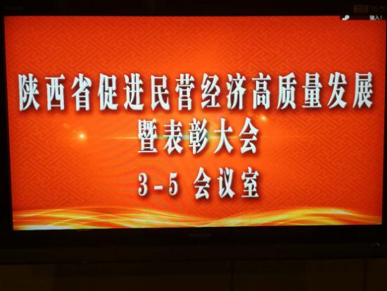 """陕西必康制药荣获""""陕西省优秀民营企业""""称号"""