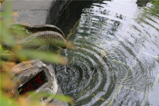 春节在山东有哪些好玩的景区,新年优选揽翠湖
