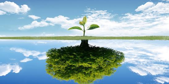 新春伊始:向前金服从容淡定,适应网贷行业变革