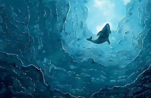 一杯小小的鲸饮屋里,装着一整片的大海