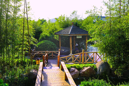 临朐旅游哪里好玩?去揽翠湖享受都市慢生活