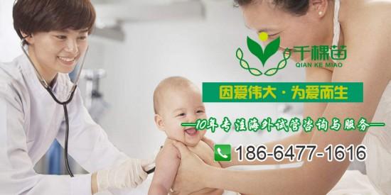 千棵苗国际:如何判断泰国代孕医院是否可靠?