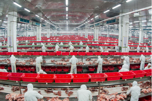 金锣集团严格把关生产加工环节 保证金锣产品金牌品质