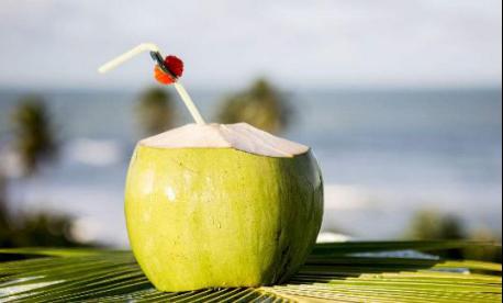 透明的椰子水和乳白色的椰汁饮品你能分得清吗?