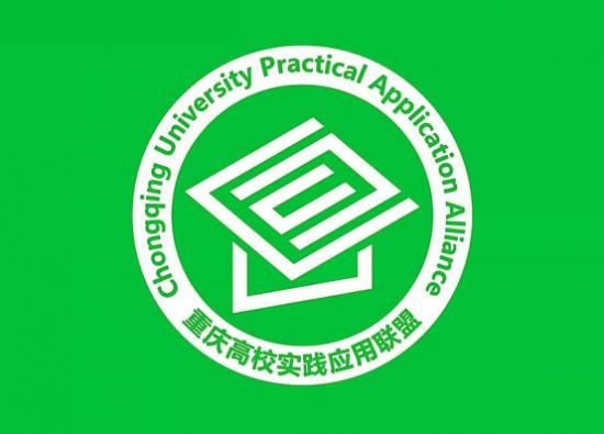 重庆高校实践应用联盟――关注欠发达地区家庭教育―我们在行动