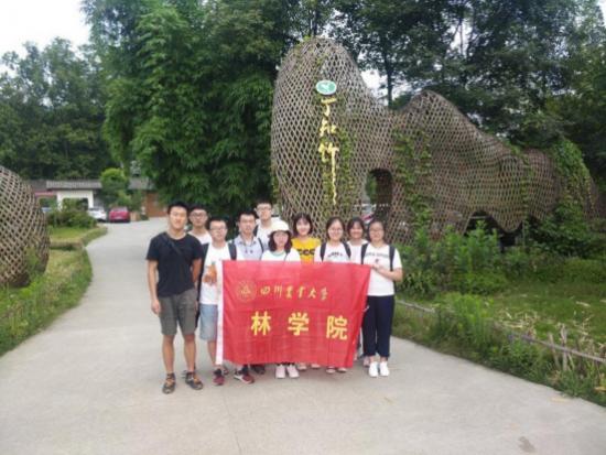 探访竹编文化,四川农业大学学子走进竹艺村