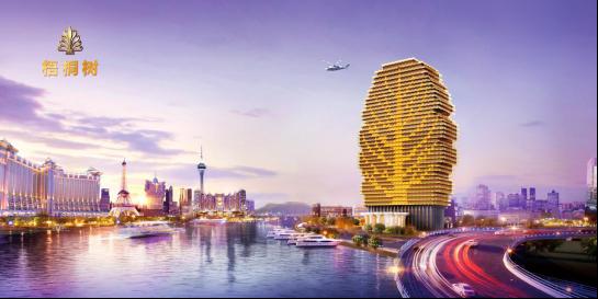 横琴梧桐树,珠海城市宣传新名片,推动经济发展