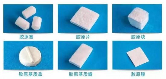 湃生膠原再生醫學材料(醫用膠原蛋白海綿)應用研究前沿的引領者