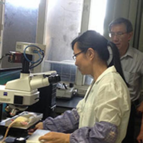 天力能生物共振晶片可以改善良性肿瘤吗