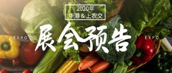 2020-2021上海农博会|上海年货展时间表及展会安排