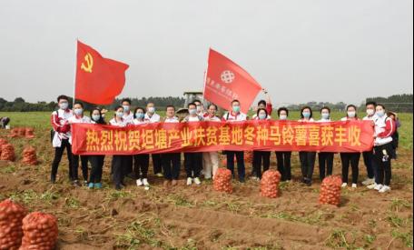 广东南粤银行持续帮扶坦塘村脱贫攻坚,马铃薯产业基地喜迎丰收