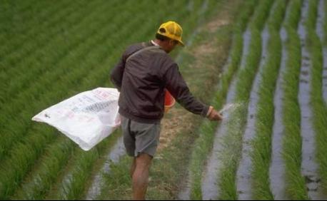 大品牌史丹利提醒:不合格产品会影响农作物产量!