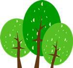 又是一年植树节,河南巴旦木生态农业赋能乡村振兴
