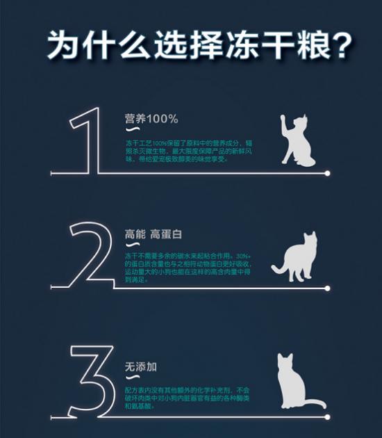 冻干猫粮为什么受欢迎?