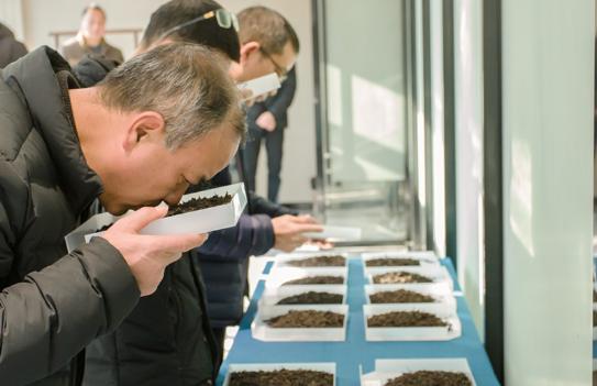 中國陳茶市場迎重磅利好:《陳年武夷巖茶儲存技術規范》團體標準公示