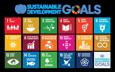 探求可持续发展新思路 UNLEASH2019招募全球创新人才