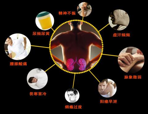"""藏方国药哥的宝补肾效果显著 13年经久不衰 成男性补肾""""不二法宝"""""""
